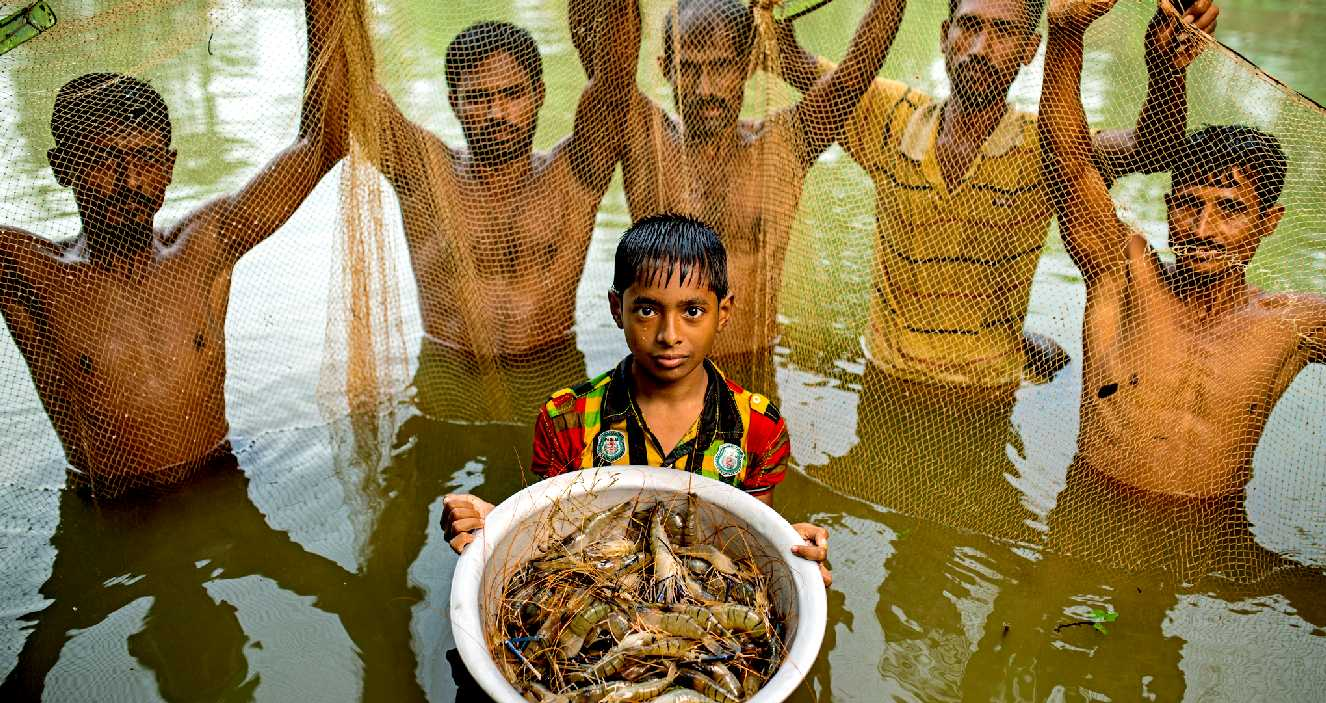 Can we feed the world using aquaculture?